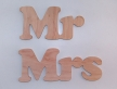 "1881-Напис ""Mr Mrs"""