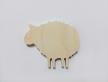 0181-Вівця